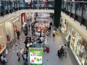 Malls need stores, but what kind of stores?